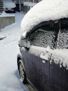 2016年1月大雪